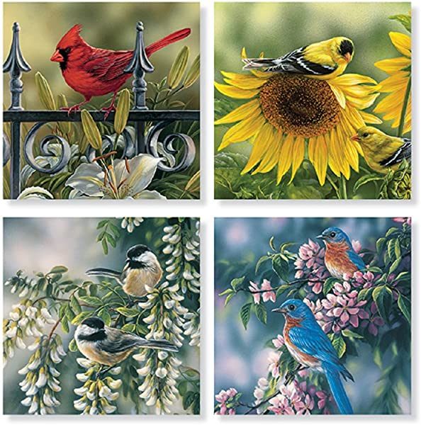 Set Of 4 Mixed Birds Square Stone Coaster Set By Carson Home Accents
