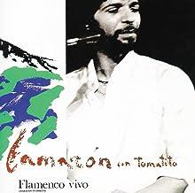Flamenco Vivo