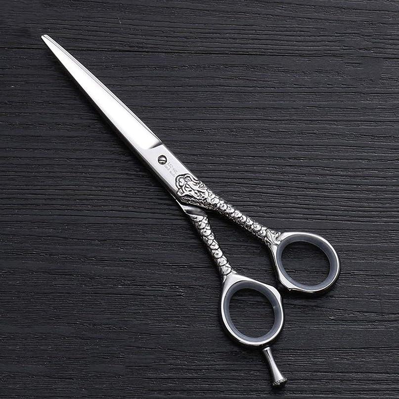 一貫性のない交通渋滞投獄カットハサミ ヘアスタイリングツール ハイエンドのパーソナライズされたプロのバリカン、6.0インチストレートプロのカット理髪はさみ ヘアカットシザー (色 : Silver)