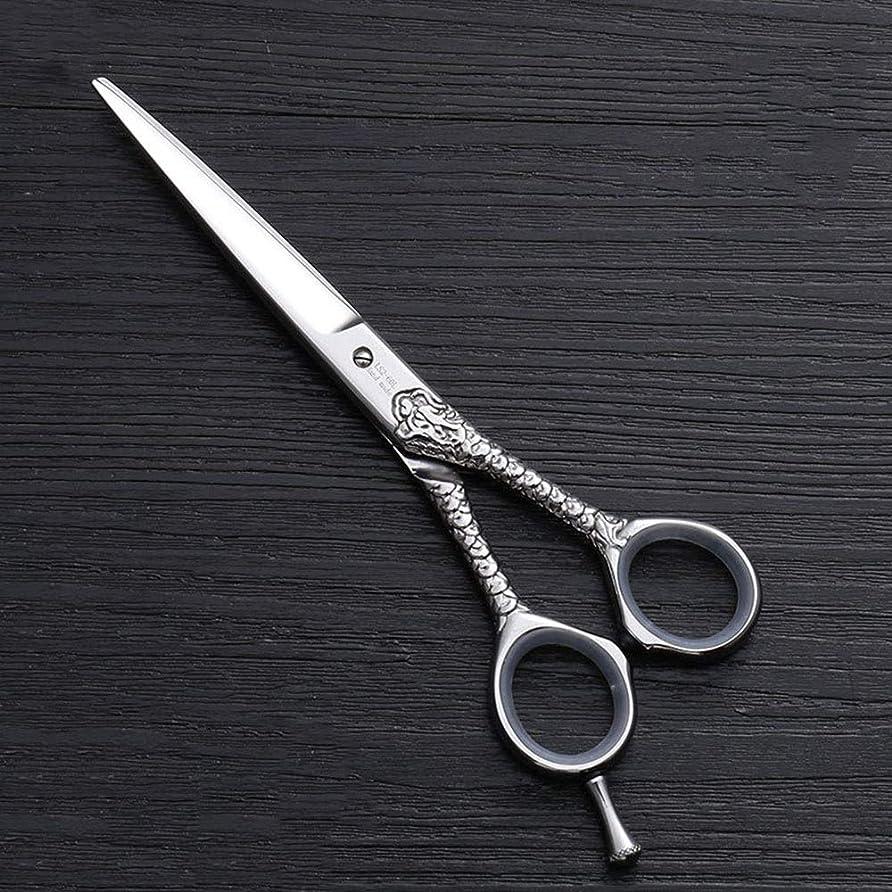 ギャップジョージスティーブンソン山ハイエンドのパーソナライズされたプロのバリカン、6.0インチストレートプロのカット理髪はさみ モデリングツール (色 : Silver)