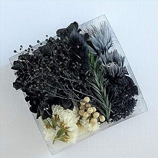 厳選花材パレット シルバーデイジー キット (ブラック) ドライフラワー プリザーブドフラワー ハーバリウム 材料 花材