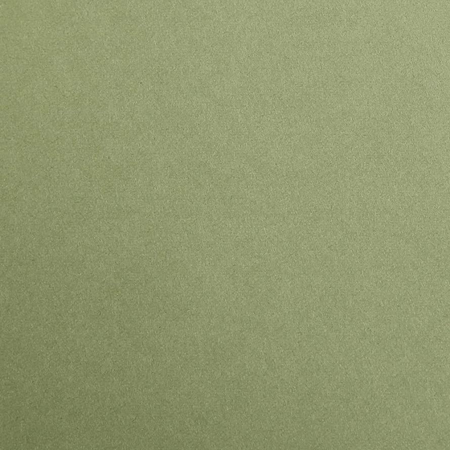 Clairefontaine Maya Coloured Smooth Drawing Paper, 270 g, 50 x 70 cm - Khaki, Pack of 25 Sheets