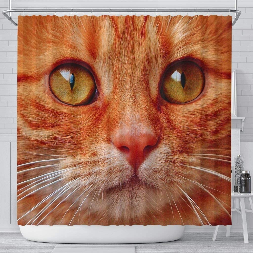 Lovely Ranking integrated 1st place Cat Face Shower Curtains Discount is also underway Print