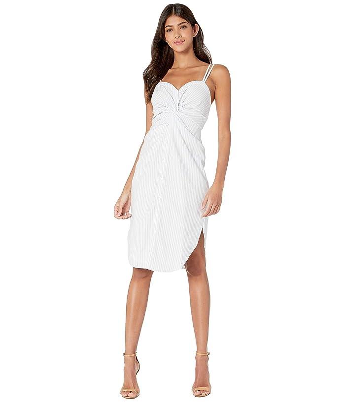 Bishop + Young Stripe Button Front Dress (Blue/White Stripe) Women