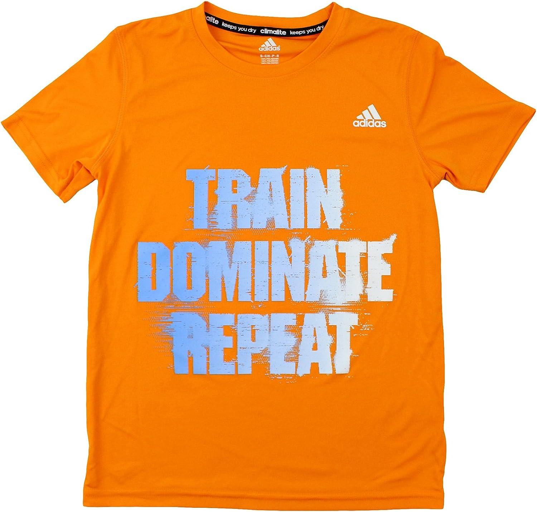 adidas Youth Big Boys Short Sleeve Climalite Train Dominate Repeat Tee
