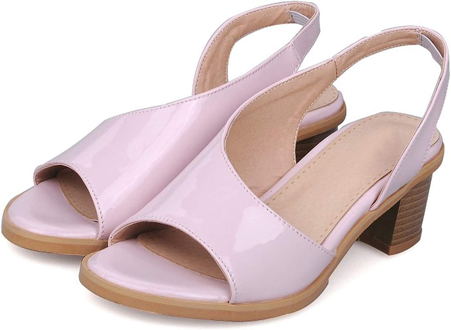 Women's Sandals Summer Fashion Slip-On Fish Mouth Open Toe Thick Heel mid Heel Women's shoes