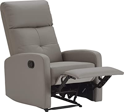 Truly Home Henderson Recliner, Light Gray