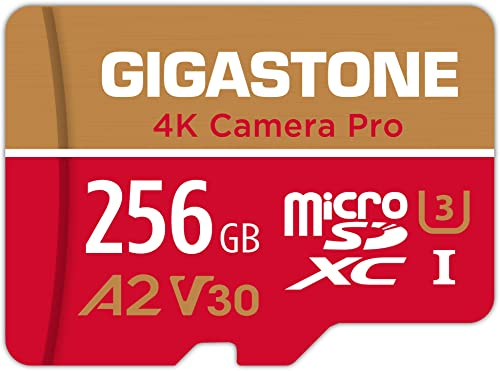 Gigastone Carte Mémoire 256 Go 4K Caméra Pro Série, Compatible avec Switch GoPro Dashcam, Vitesse de Lecture allant j...