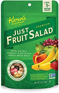 Karen's Naturals Just Fruit Salad, 2 Ounce Pouch (Packaging May Vary) All Natural Freeze-Dried Fruits & Vegetables, No Add...