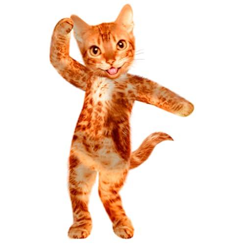 Tanzen sprechende Katze