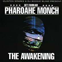 The Awakening [Explicit]