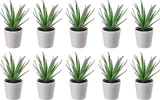 comprar comparacion Ikea FEJKA Mini plantas de escritorio artificiales suculentas en macetas (6 centímetros) – Juego de 10