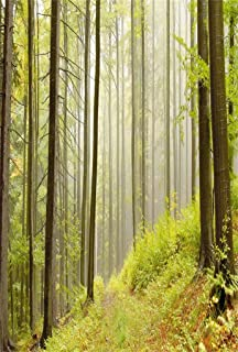 AOFOTO 3x5ft Beautiful Autumn Forest Scenery Backdrop For Photography Mountains with Beech Trees Background Fall Misty Woods Photo Studio Props Lovers Adult Girl Boy Man Artistic Portrait Wallpaper