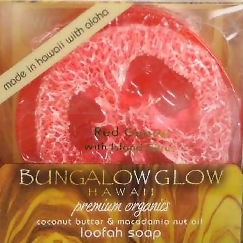 特権贅沢なボーダーハワイアン雑貨 ハワイ雑貨【バンガローグロー】ハワイからのオーガニックソープ(レッドグアバ) 【お土産】