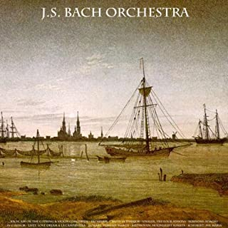Best air bach violin Reviews