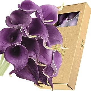 Best real black flowers Reviews