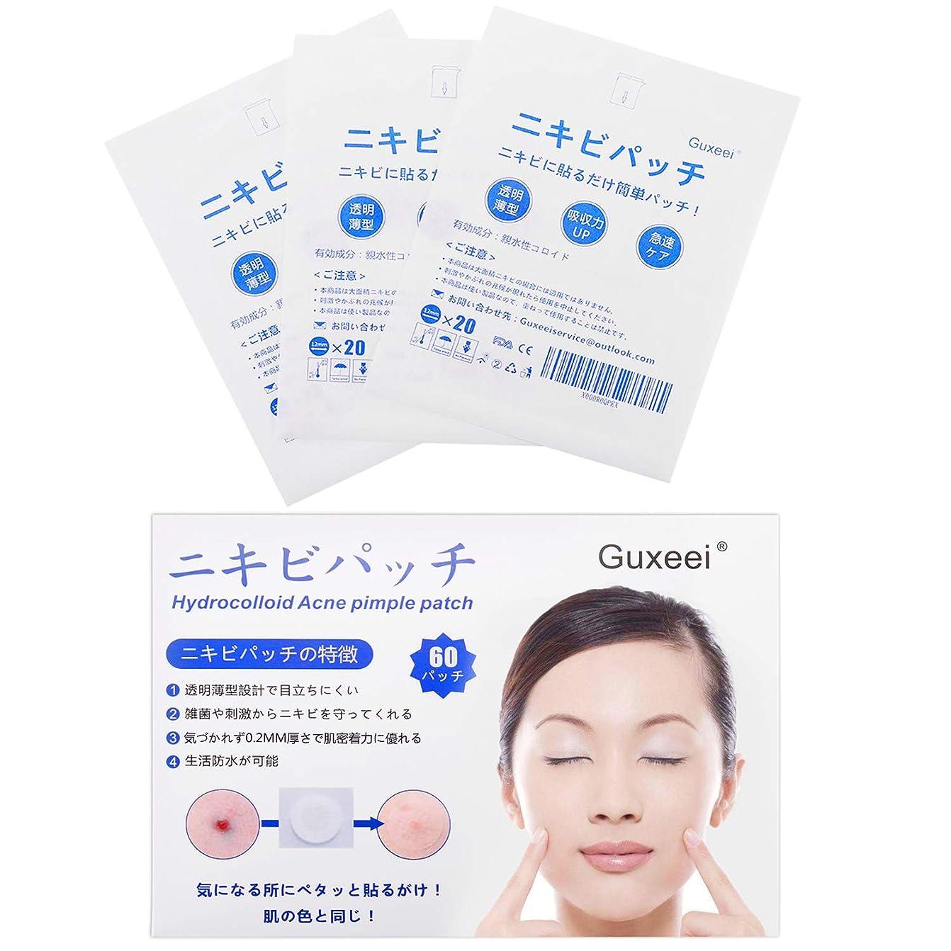 しわ締めるストライドGuxeei スポット ニキビ コンシーラー Acne Pimple Patch 12mm(3枚 60パッチ入り )