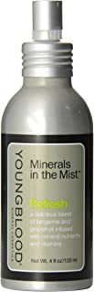 Youngblood Minerals in The Mist Refresh Spray for Women - 4 oz