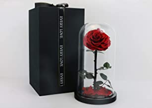 Beauty and the Beast Rose, Preserved Real Rose Handmade Eternal Rose in Glass Doom Gift for Her Valentine's Day, Mother's ...