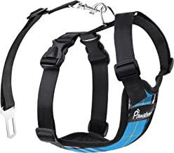 Best cutest dog harness Reviews