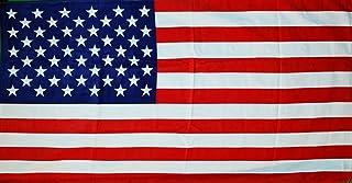 American Flag Terry Velour Beach / Bath Towel