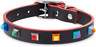 Bond & Co. Designer Stud Dog Collar