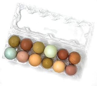 12 Pack Premium Clear Plastic Reusable Dozen Egg Container Carton with Labels holds 12 Large Eggs