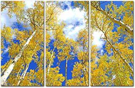 wall art decor poster painting on canvas print pictures 3 pieces autumn foliage aspen trees in