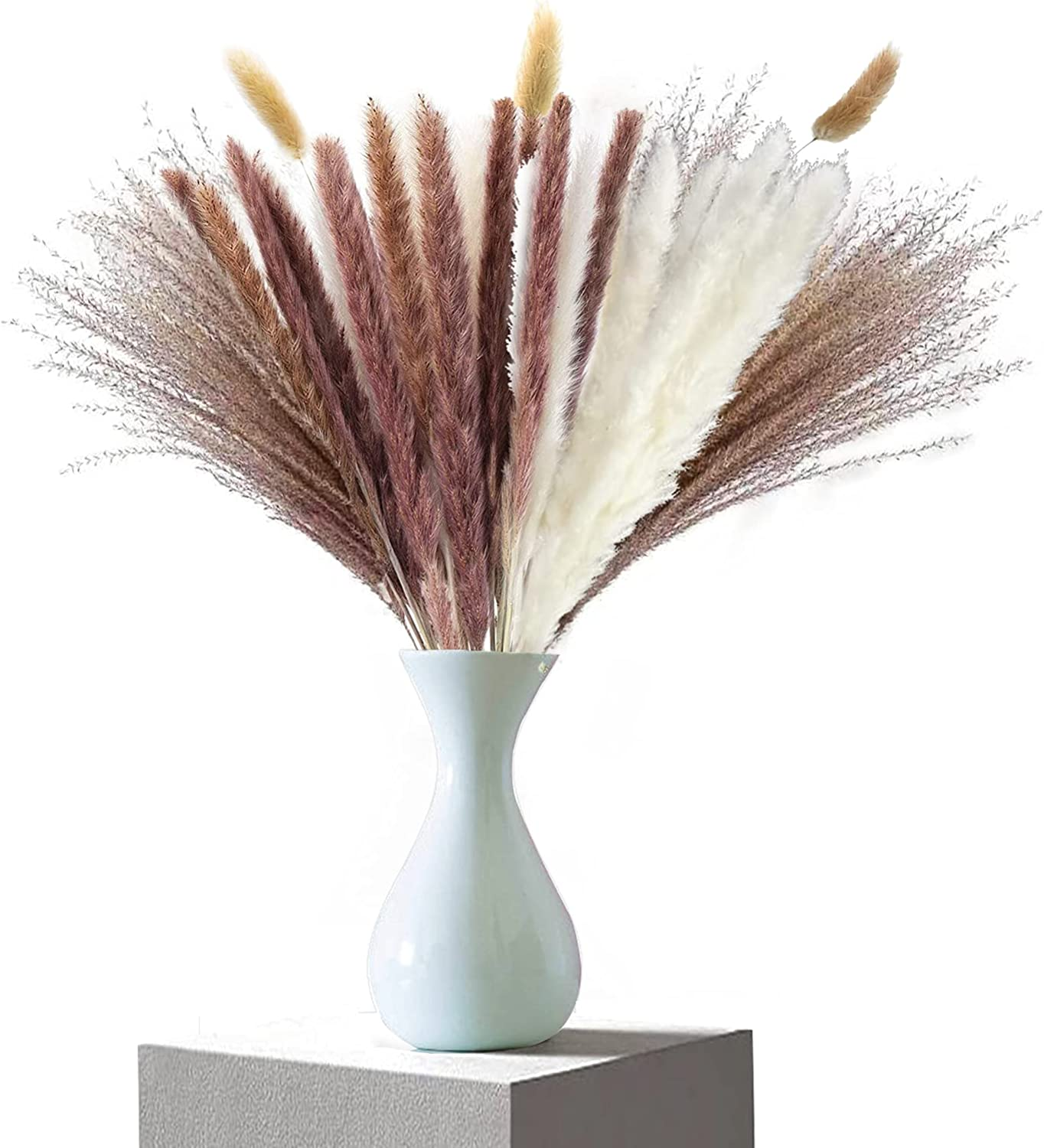 Dried Pampas Grass Natural Decor Ranking integrated 1st place A Shipping included Flower Boho for