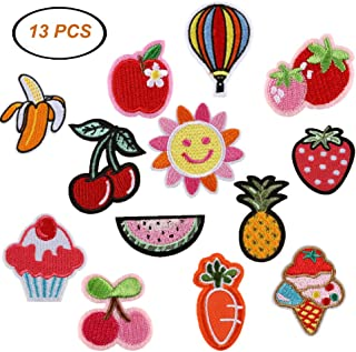 ARTEM Fruit Flower Motif Applique Iron On/Sew On Patch Embroidered Badge Patch Decoration for Kid's Clothing Bag Shoes Pants Jeans Jackets(13 PCS)
