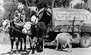 Monte Vista, Colorado - 20th Annual Ski-Hi Stampede, Natives with Covered Wagon Photograph (12x18 Art Print, Wall Decor Travel Poster)