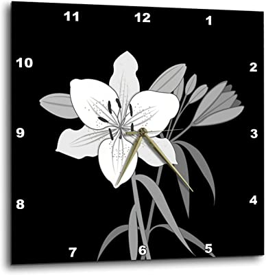 3dRose Natalie Paskell - Flora and Fauna - Day Lilies Illustration Monochrome. - 15x15 Wall