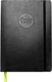 Passion Planner Large Dated Jan-Dec 2020 - Goal Oriented Weekly Agenda, Reflection Journal (A4-8.3 x 11.7 in) Monday Start (Elite Black)