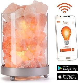Himalayan Glass Salt Lamp w/WiFi Dimmer Cord Bulb