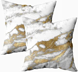 EMMTEEY Home Throw Pillowcase for Sofa Cushion Cover Marble Gray Black Daisy Flowers Plants Dog Border Lying Down Panting Autumn Leaves Long Decorative Square Double Sided Printing 18X18Inch,Set of 2