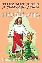 Flood Gates (Child's Life of Christ)