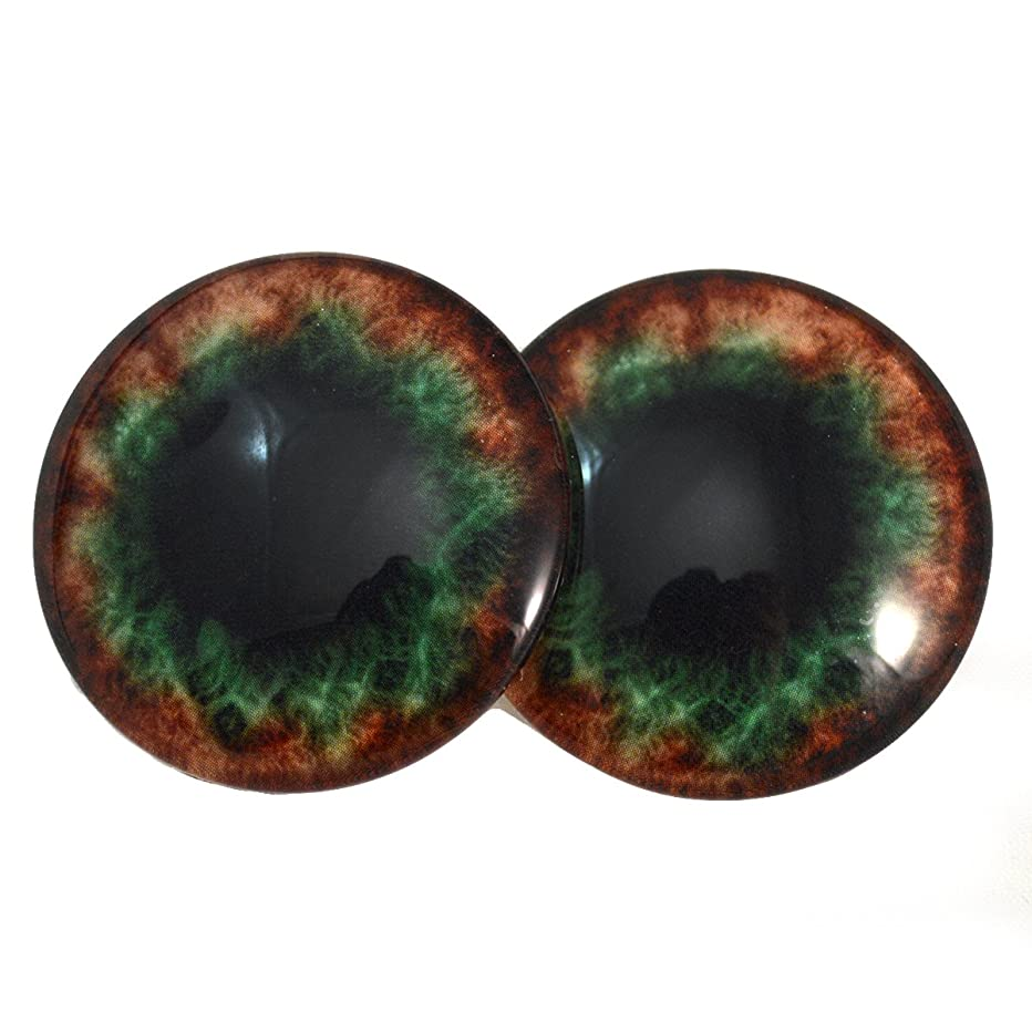 40mm Brown and Green Human Glass Eyes Fantasy Cabochons for Art Doll Taxidermy Sculptures or Jewelry Making Set of 2