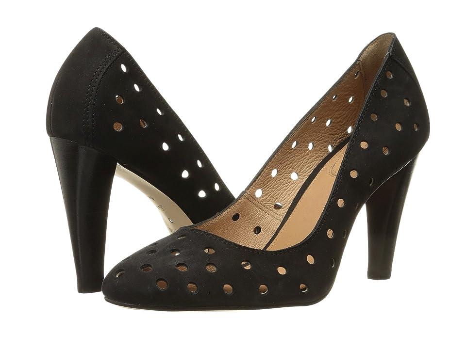 CC Corso Como Sydney (Black Nubuck) High Heels