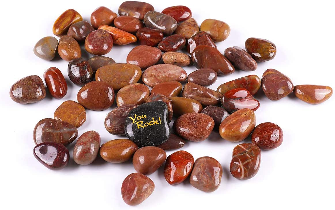 ROCKIMPACT 35% OFF 5.5lb Highly Polished Planters Rocks Decorative Choice for