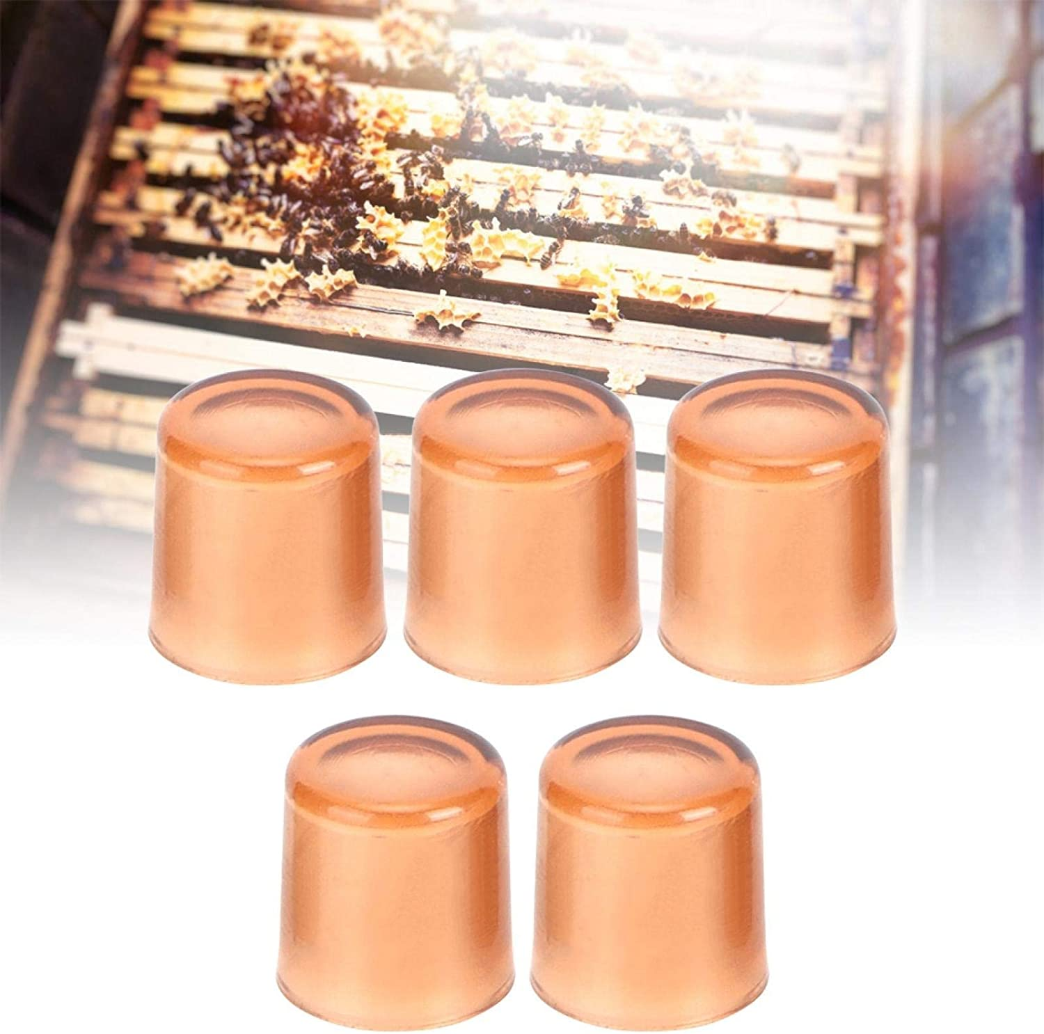 Bamjour Beekeeping Rearing Max 65% OFF Max 62% OFF Box 500Pcs Cups Plastic Brown Cell Be