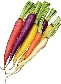 Burpee Kaleidoscope Blend Carrot Seeds 1500 seeds