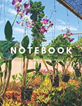 Notebook: Beautiful purple orchids.: Description: A black line: Cover: Paperback gloss: Size: 8.5 * 11 inches.