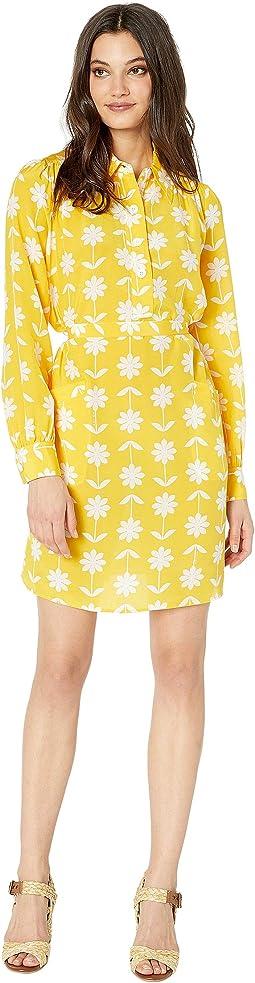 Sunlit/Marigold Flower