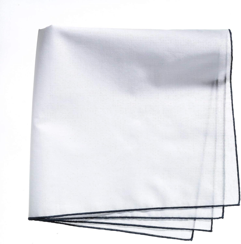 Lehner Switzerland Men's Fancy Woven White Cotton Handkerchief Blue Hand Rolled Hem