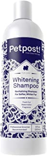 Petpost | Dog Whitening Shampoo - Best Lightening Treatment for Dogs with White Fur - Soothing Watermelon Scent - Maltese,...