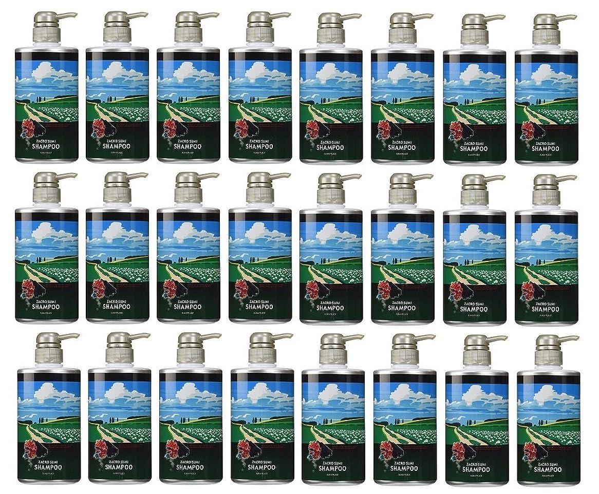 いつも忍耐単独で【24本セット】 サニープレイス ザクロ精炭酸シャンプー 500ml