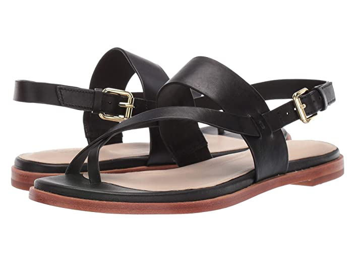 Cole Haan  Anica Thong Sandal (Black) Womens Dress Sandals