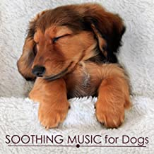 Soothing Music for Dogs - Calming and Relaxing Music for Putting a Dog to Sleep, Pet Therapy