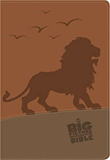 The CSB Big Picture Interactive Bible, Lion LeatherTouch (The Big Picture Interactive / The Gospel Project)
