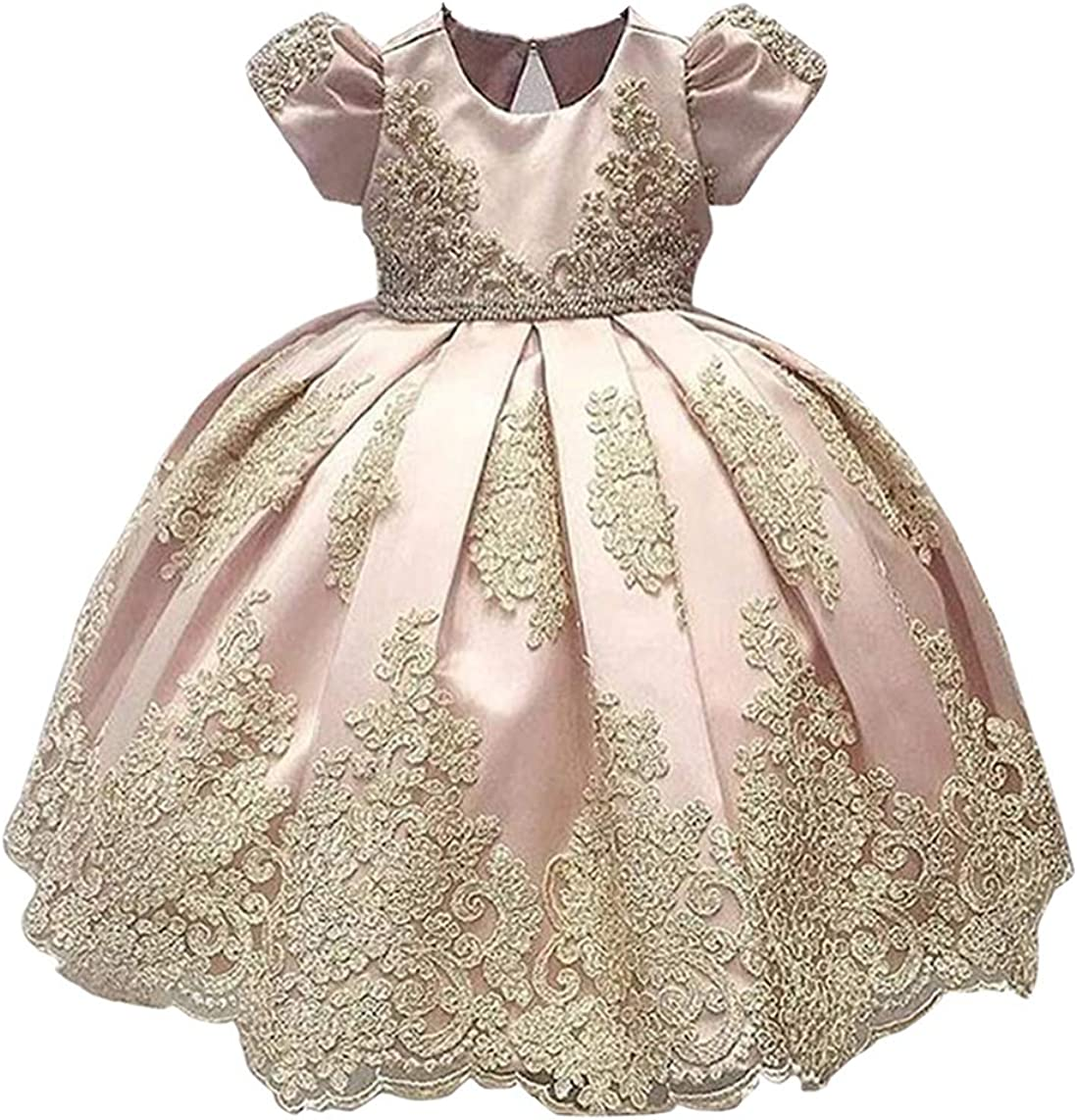 ABAO SISTER Baby Girls Flower Girl Dress Infant Princess Ball Gown Birthday  Party Dresses